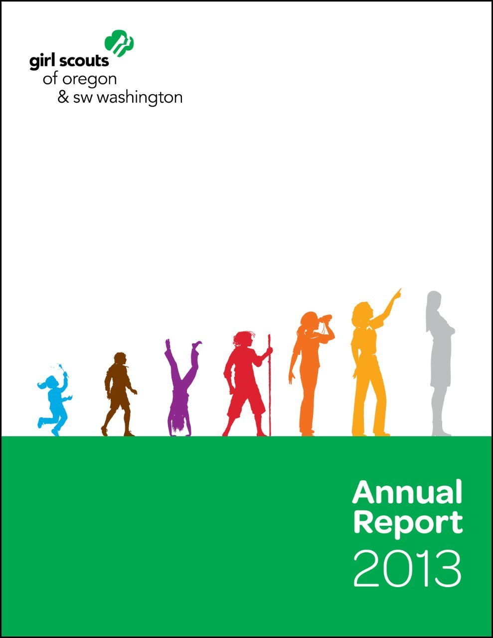 GSOSW 2013 Annual Report