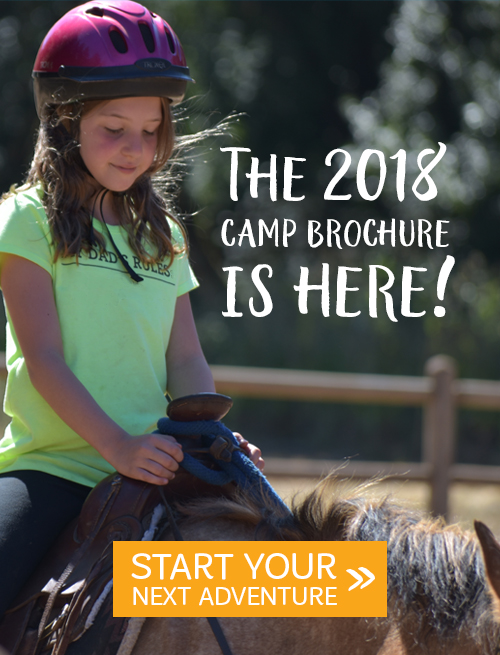 The 2018 Camp brochure is here!